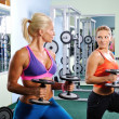 Stock Photo: Two beautiful women exercise in gym with weights