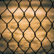 Mesh fence isolated - Stock Photo