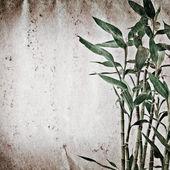 Textura de papel de bambú antiguo grunge — Foto de Stock