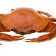 ������, ������: Red crab