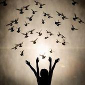 Silhouet van meisje en duif — Stockfoto