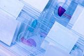Science microscope slide — Stock Photo