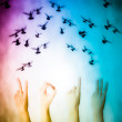 Hand with 2013 number flying doves new year background — Stock Photo