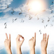 Royalty-Free Stock Photo: New year 2013 abstract with doves flying on blue sky and cloud b