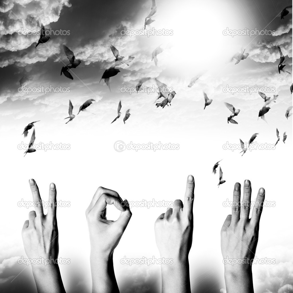 Hand with new year 2013 abstract with doves flying on blue sky and cloud background — Stock Photo #18424919