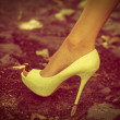 High heel shoe — Stock Photo