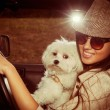 Girl and dog in car — Stock Photo