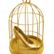 Stock Photo: Golden birdcage and shoe