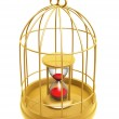 Golden birdcage and hourglass — Stock Photo #29345905