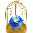 Golden birdcage and earth — Stock Photo