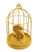 Golden birdcage and dollar symbol — Stock Photo