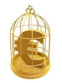 Golden birdcage and euro symbol — Stock Photo
