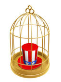 Golden birdcage and hat of USA — Stock Photo
