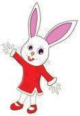 Cartoon Rabbit — Stock Photo