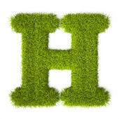 Grass style Latin Alphabet Letter H — Stock Photo