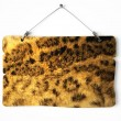 Hyena fur notice board — Stock Photo