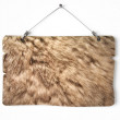 Rabbit fur notice board — Stock Photo