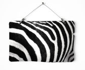 Zebra fur notice board — Stock Photo