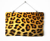 Cheetah fur notice board — Stock Photo