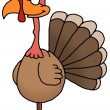 Turkey — Stock Photo