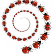 Stock Photo: Ladybird Spiral