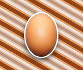 Egg Background — Stock Photo