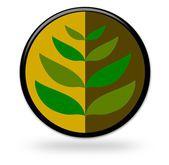 Plant Design — Stock Photo