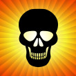 Black Skull — Stock Photo