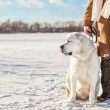 Man and central Asian shepherd walk in the lake — Stock Photo #37365439