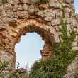 Castle ruins — Stock Photo