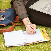 Young male student sitting on grass in park and holding a laptop — Fotografia Stock