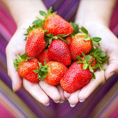 Strawberry in hands — Stock Photo