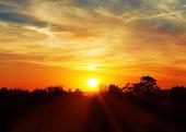 空、明るい青、オレンジおよび黄色色の日没。インスタント写真 — ストック写真