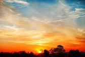 Himmel, blau, orange und gelb buntfarben sonnenuntergang. foto — Stockfoto