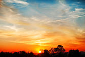 Sky, Bright Blue, Orange And Yellow Colors Sunset. Instant Photo — Stock Photo