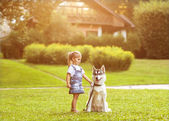 Little girl in the park their home with a dog Husky — Stock Photo