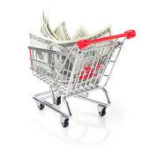 Geld in uw winkelwagen — Stockfoto