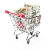 ショッピングカートでお金 — ストック写真