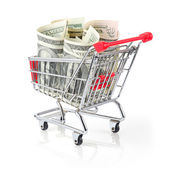 Money in Shopping Cart — Stock Photo
