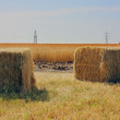Haystack — Stock Photo #12078980