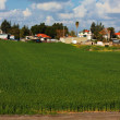 Israeli agricultural settlement — Stock Photo #12254016