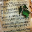 Stock Photo: Sheet music and green leaf