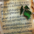 Sheet music and green leaf — Stock Photo