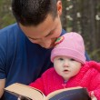 Stock Photo: Dad and Baby Daughter Reading Bible