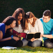 Group Bible Study — Stock Photo