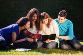 Group Bible Study  — Foto de Stock