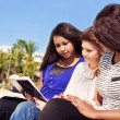 Friends Reading Bible on the Beach — Photo