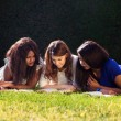 Three Friends Studying — Stock Photo #51538509