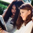 Three Girls Studying the Bible Together — Stock Photo #51538587