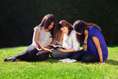 Three Friends Studying Together in Nature — Stock Photo